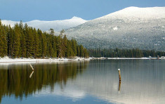 Snow coated forrest surrounding Priest Lake near Elkins Resort