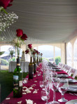Wedding Reception at Elkins Resort.