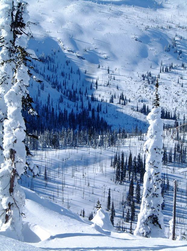 Snowmobile trails around Elkins Resort