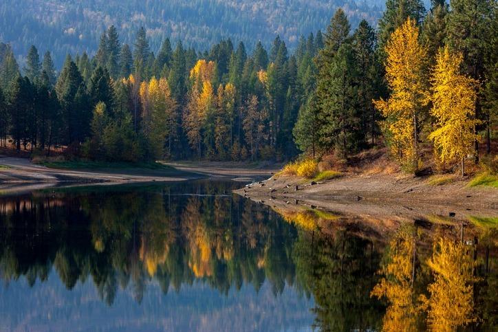 fall foliage at priest lake